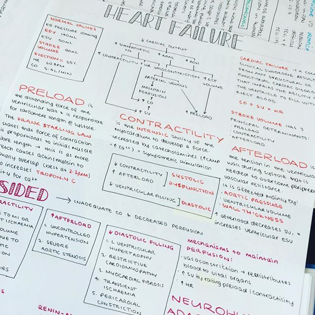Cramming some heart failure notes before tomorrow's exam! Brain is dangerously close to overload