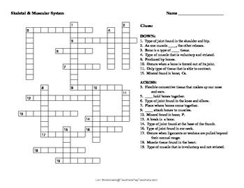 Crossword puzzle that covers the structure and function of the muscular system and the skeletal system.