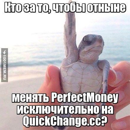 Хоть на quickchange.cc обмен валюты круглосуточный, он никогда не устает работать для вас! #валютаобменонлайн #валютаonline #обменник онлайнquickchange #сайтобменникquickchange #quickchange_cc