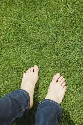 Epson Salt & Lawn Care. For every 100 square feet of lawn, the Dirty Doctor recommends applying half a pound of Epsom salts over the lawn using the spreader. Alternately, combine 1 ounce of Epsom salts with a gallon of water, blend thoroughly, and use a mister to treat the lawn with the mixture. Awesome natural fertilizer!
