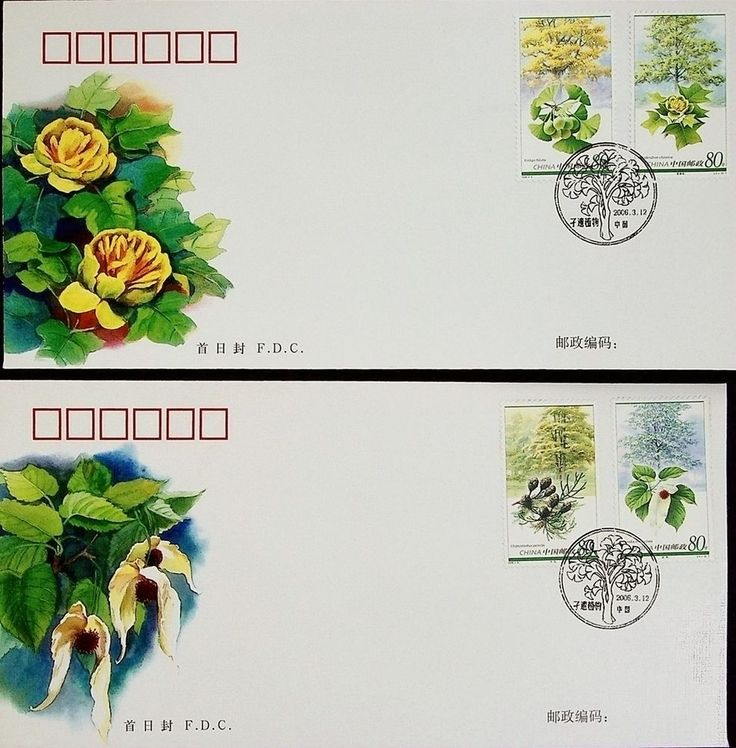 China 2006-5 Plant of Relic Species Stamps FDC