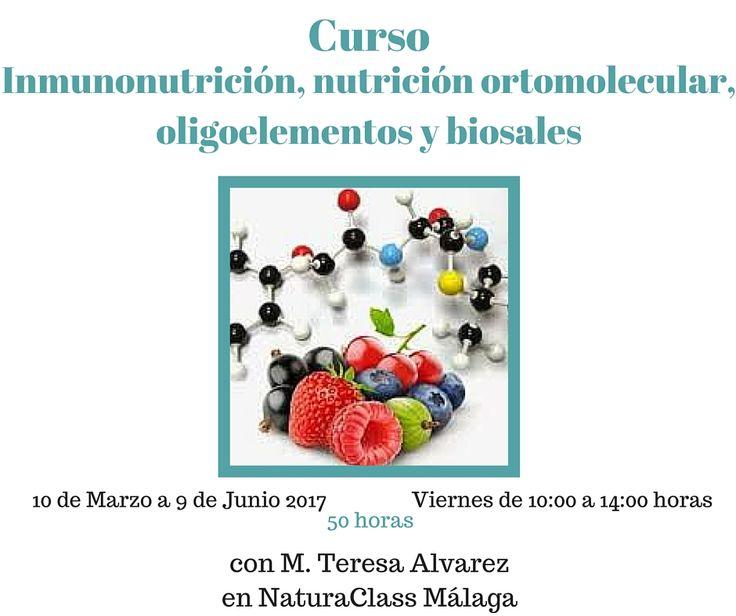 Curso de Naturopatía funcional, revisando nutrición ortomolecular, inmunonutrición, oligocatálisis y litodequelación y biosales (sales de Schüssler) de 50 horas de duración en NaturaClass en Málaga (Programa de Graduado en Naturopatía)
