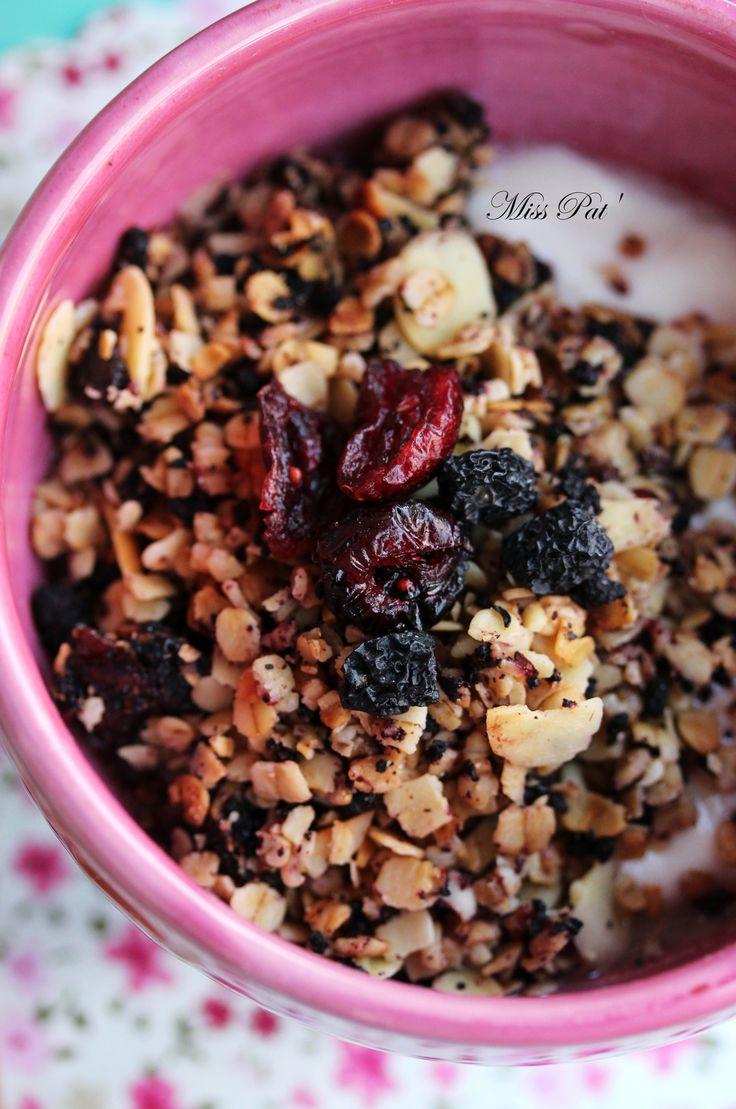 Granola cranberries aronia 3 misspat blog