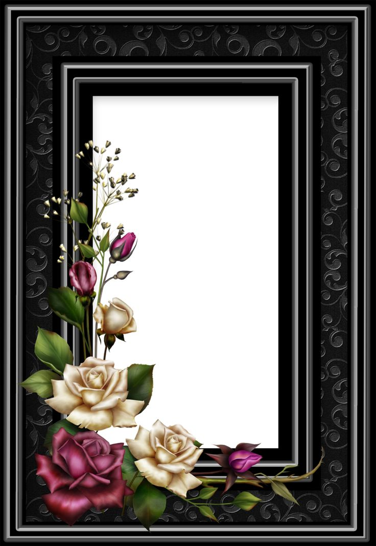 """Frame17"" by collect-and-creat.deviantart.com on @DeviantArt"