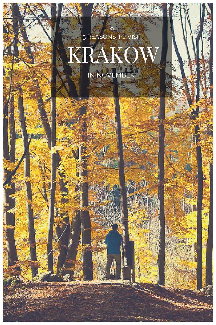 5 reasons to visit Krakow in November