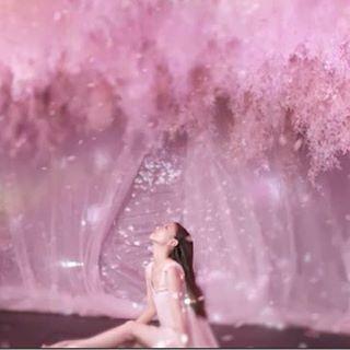 【naked_inc】さんのInstagramをピンしています。 《. 【#flowersbynaked のテーマソング、大塚 愛『#サクラハラハラ』PVを監督・制作】 . 日本橋三井ホールにて開幕した#flowersbynaked のテーマソング、シンガーソングライター 大塚 愛『サクラハラハラ』PVが公開。今回#村松亮太郎 は、このPVの監督・制作を手がけました。 . PVは昨年の10月、沖縄で#flowersbynaked が開催したときに撮影を行い、半年間の編集・制作を得て、ようやく公開! . 大塚 愛氏が作詞・作曲を手がける『#サクラハラハラ』は、#桜 を女性に例え、花のようにハラハラする女性の恋心を表現している楽曲です。 . PVでは、桜のアート空間『#桜彩』とのコラボレーションにより、女性の美しさや妖艶さなど楽曲のシーンに合わせ、光と風を駆使して演出。 . 『#サクラハラハラ』は、大塚 愛氏が2年9ヶ月ぶりにリリースするNew Single「私」にも収録。2月15日(水)発売です。 . PVはこちら⇨https://youtu.be/JieyR8c6qyY…