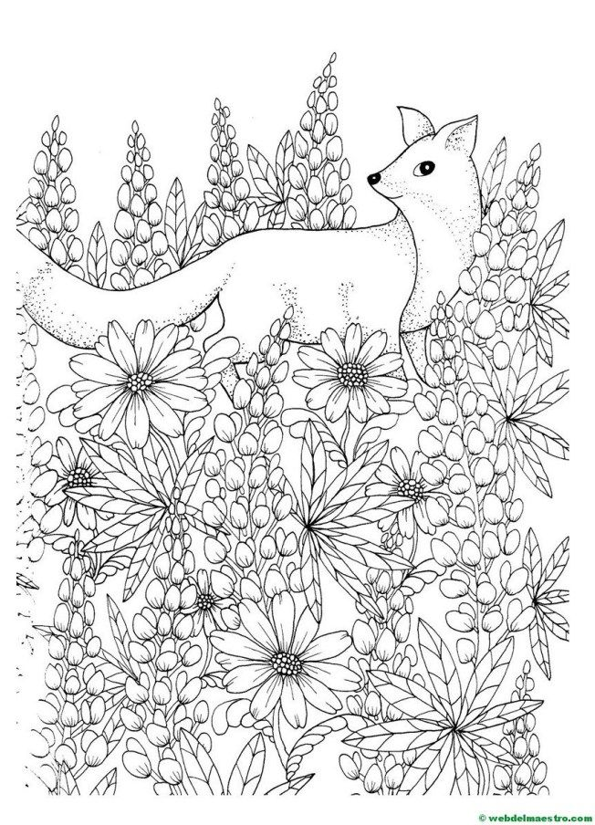 Dibujos Antiestres Cute Coloring Pages Coloring Books Animal