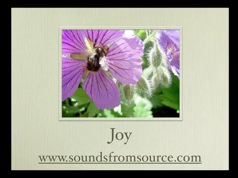 Joy. Poems by Mikael (Archangel Michael) channelled by Sheila Kennedy