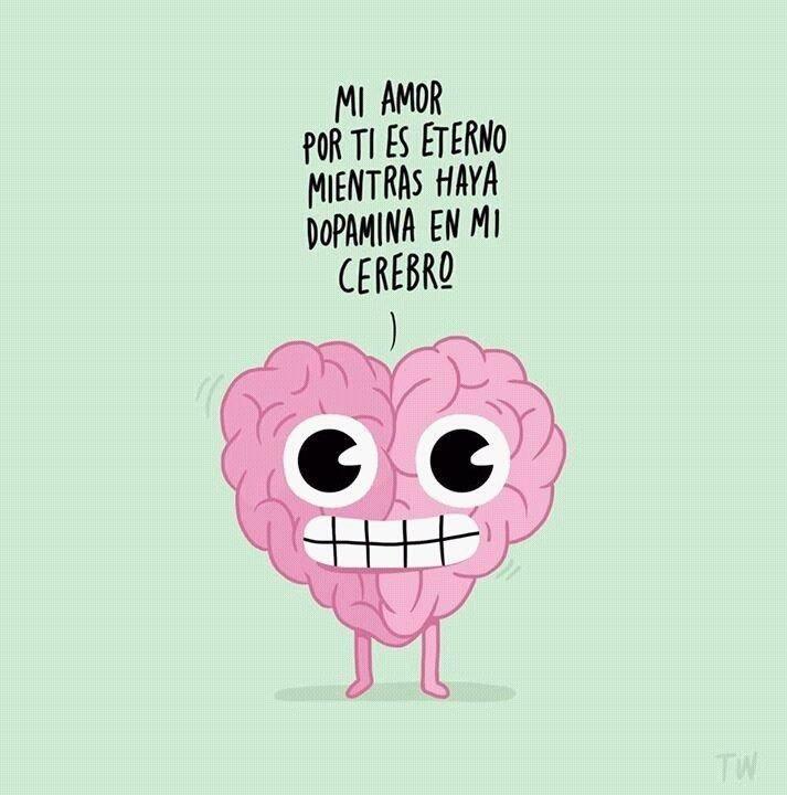love in the brain essay