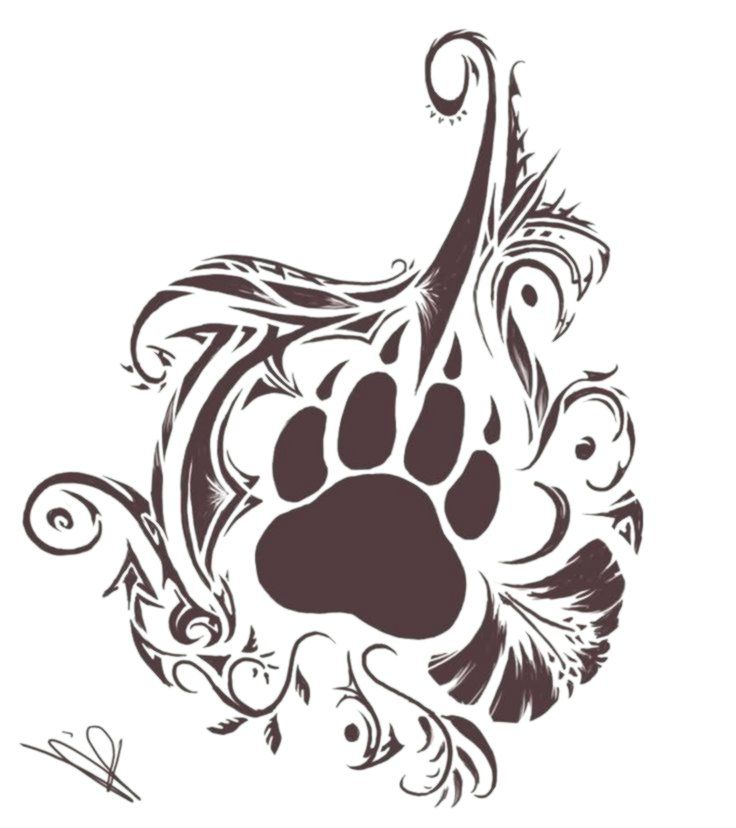 Nice Bear Paw And Tribal Design Tattoo Catherine Aflalo Tribal Animal Tattoos Bear Paw Tattoos Bear Tattoos