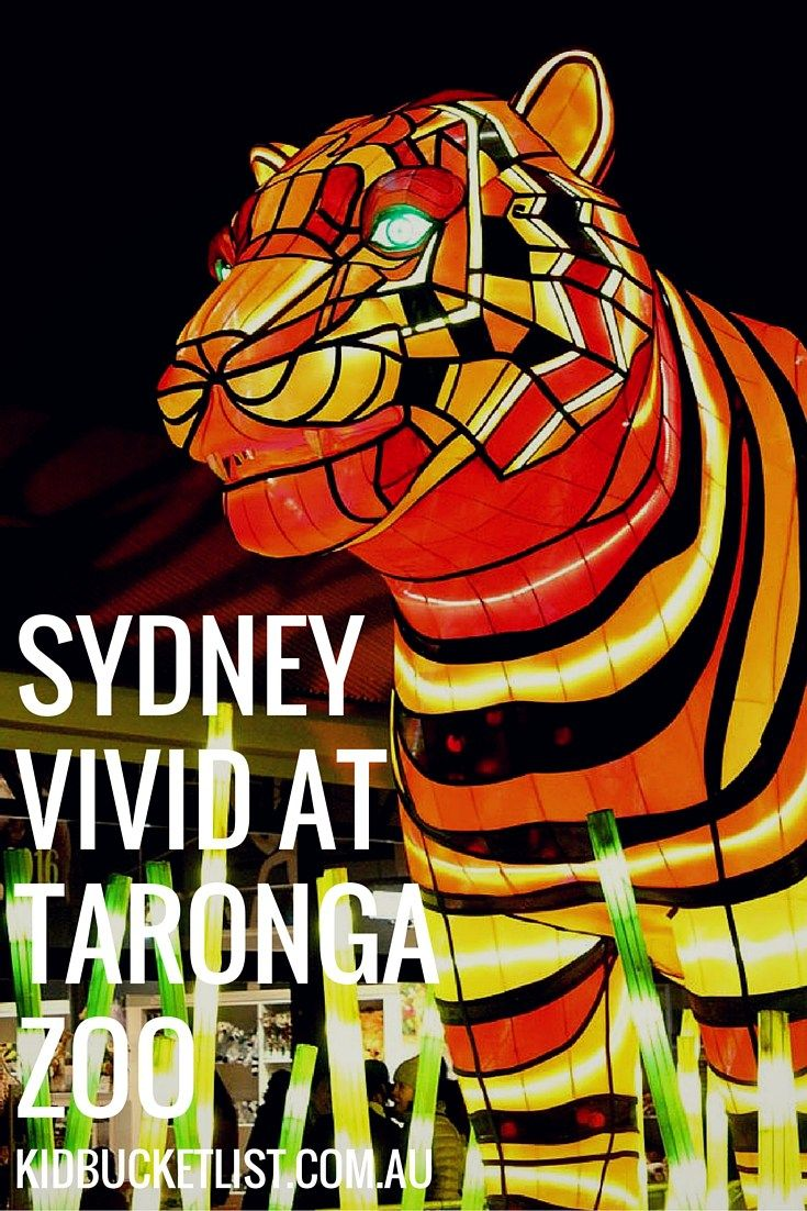 Vivid Sydney at Taronga Zoo : The Best Vivid Experience for Families
