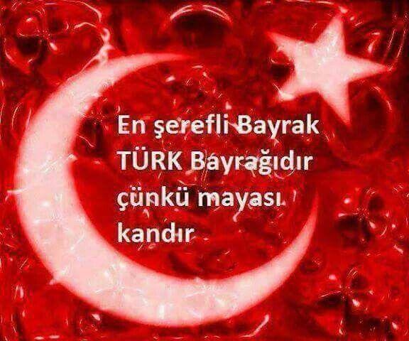 En şerefli bayrak Türk bayrağıdır