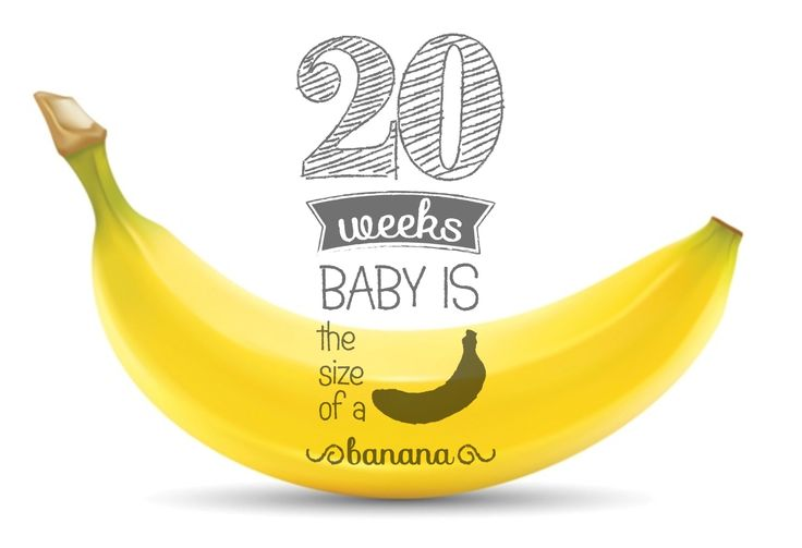 20 weeks pregnant  , 20 weken zwanger