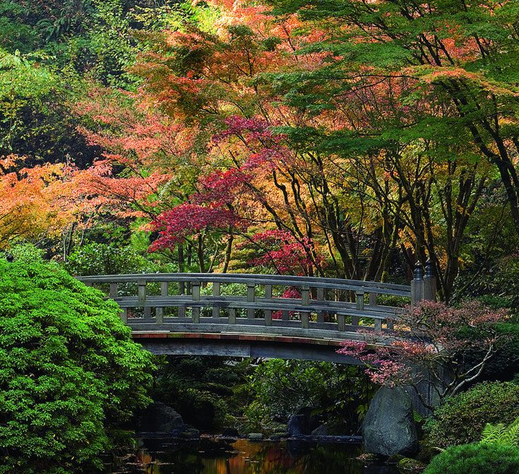 44 Best Images About Japanese Gardens On Pinterest