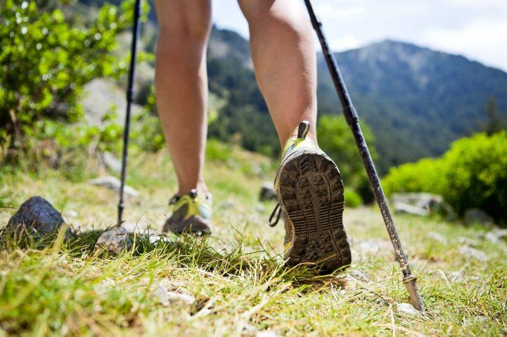 Hiking - Cranbrook Tourism