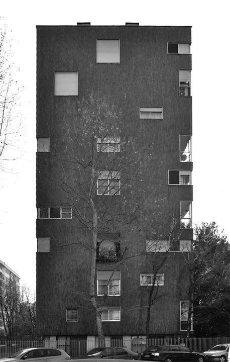 Caccia in via Ippolito Nievo  Foto di Andrea Villa, Milano 1957