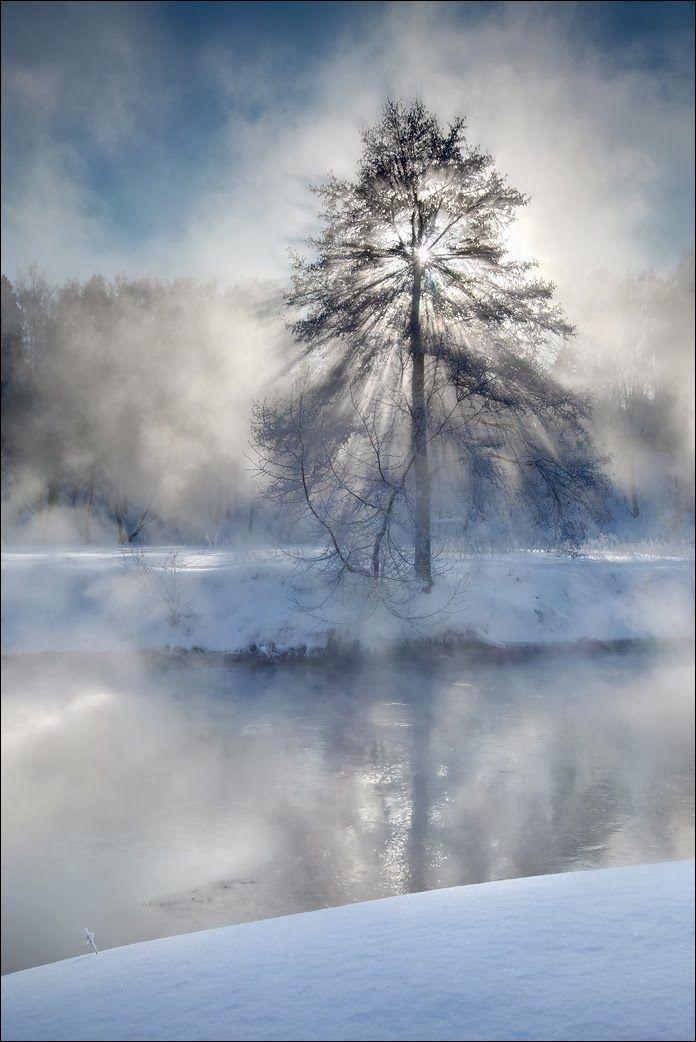 Misty dream of winter