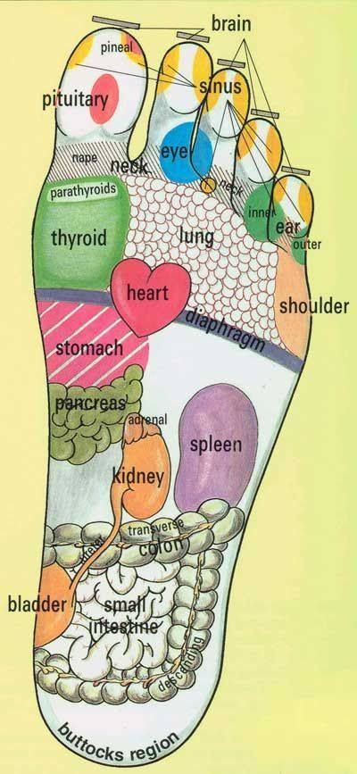 Foot pressure points for use with essential oils....
