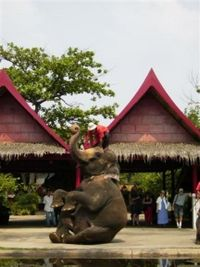 Bangkok Rose Garden Cultural Center and Thai Village Half-Day Tour #bangkok #rosegarden