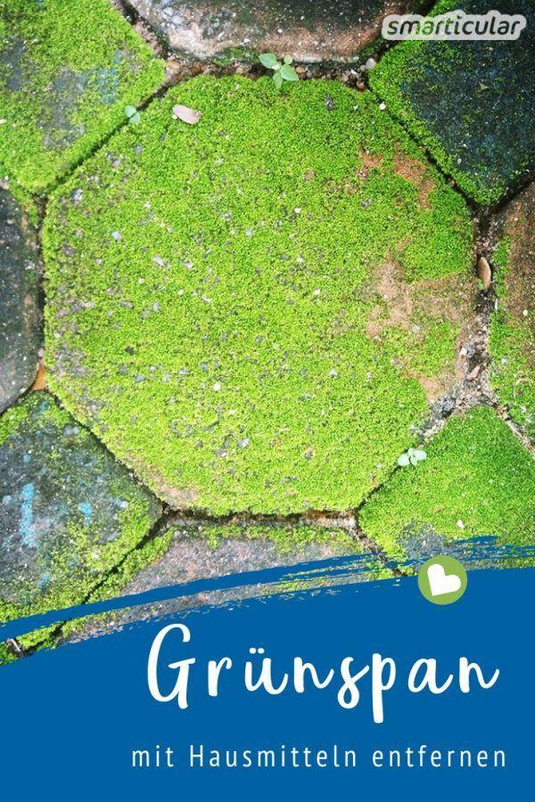 Grunspan Und Moos Entfernen Von Holz Stein Und Blumentopfen Im Garten Moos Entfernen Gruner Garten Und Garten