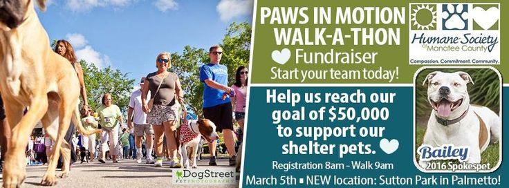 Paws in Motion Walkathon 2016