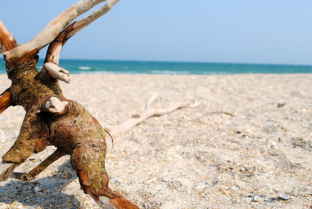 NC beaches, love them. Wrightsville Beach, NC.: Photo