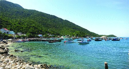 Limited tourism helps keep island green          Still pristine: Many visitors to Hoi An City cannot resist the unspoilt beauty of Cham Island, which they can reach in just 25 minutes.    Tourism has been a boon for residents of islands off the coast of Hoi An, but it is the authorities decision to limit the number of visitors that... #vietnamtravelnews #vntravelnews #vietnamnews  #traveltovietnam #vietnamtravel #vietnamtour