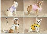 diy and more dog harness diy dog