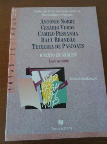 Cesário Verde, Camilo Pessanha, Teixeira Pascoaes... Texto Editora Viseu - imagem 1