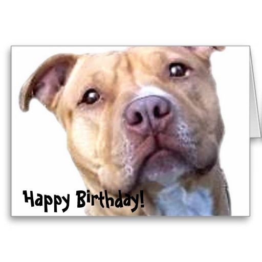 133 Best Images About Birthday Cards On Pinterest