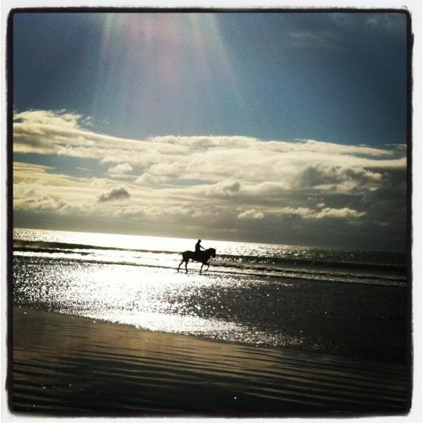 Horse & Rider on Clonea Beach