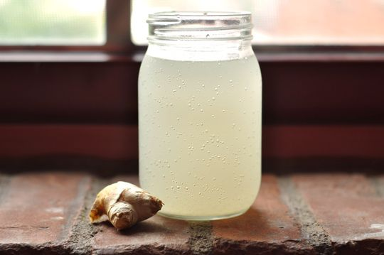 Homemade Ginger Ale: Grated ginger, sugar, lemon juice, water, a pinch of baker's yeast and just a few days of fermentation and it's ready to sip!