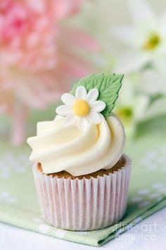 Daisy Cupcake. Love daisies!!!