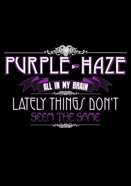 Purple Haze - Jimi Hendrix - Classic Rock Lyrics