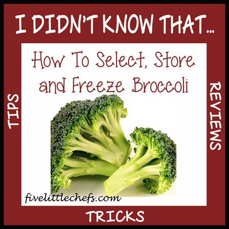 how to select store and freeze broccoli five little chefs - Can You Freeze Fresh Broccoli