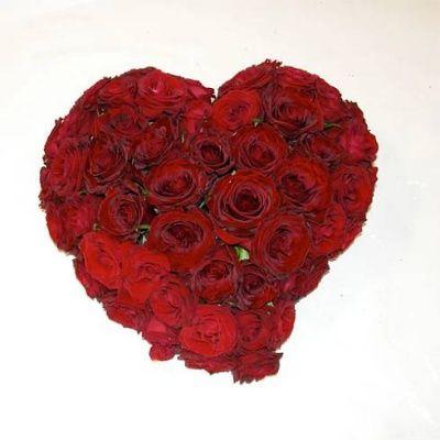 Immagini+rose+rosse