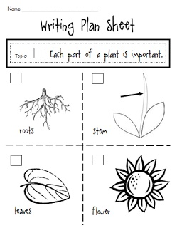 Parts of a Plant - Writing Plan Sheet