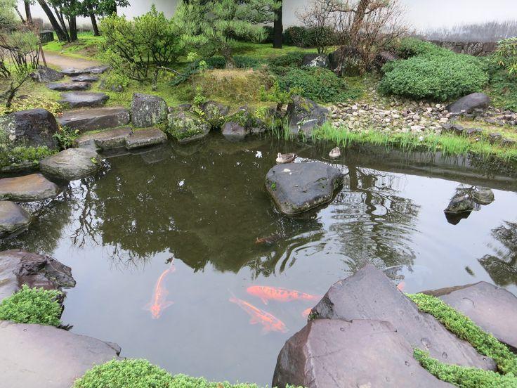Questo giardino fa parte del #Koko-en nei pressi del castello di #Himeji  Non vi piacerebbe averne uno anche voi? http://viaggigiappone.animeclick.it