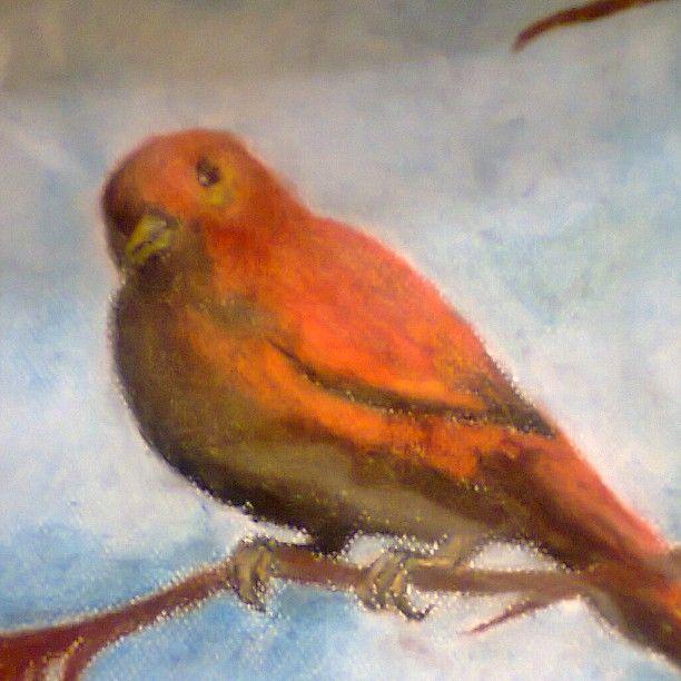 #myart #art #picture #oilpastels #bird