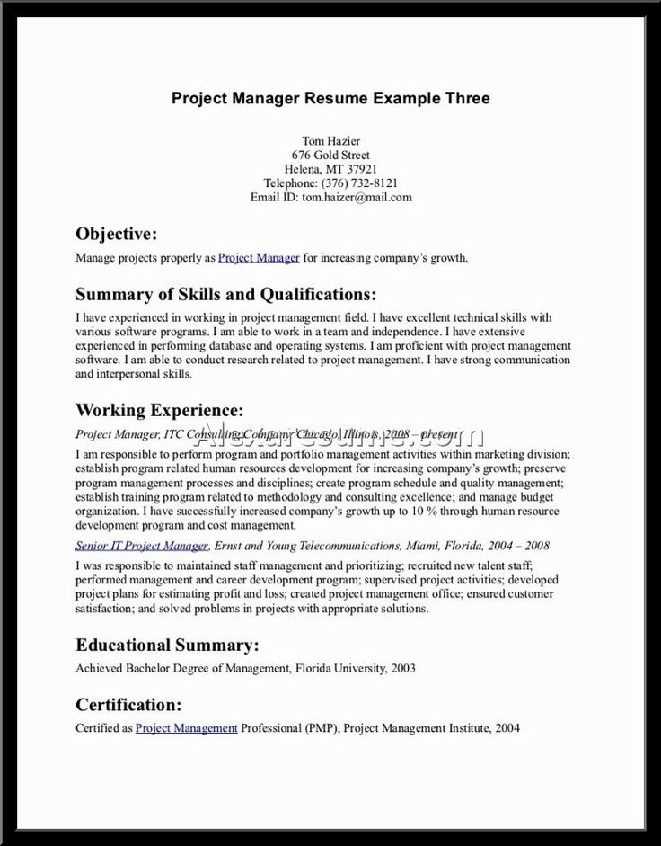 resume summary examples objective executive example the