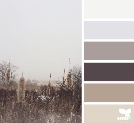 foggy tones | design seeds