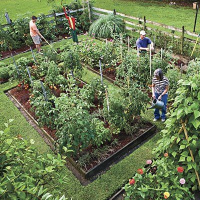 Nice article on how to grow a vegetable garden and landscape it for beauty as well as efficiency in a small space
