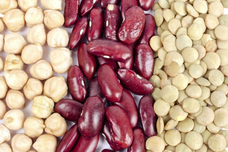 Ny forskning: Et måltid med vegetabilsk protein baseret på bælgfrugter som bønner og ærter mætter bedre, end måltider baseret på animalsk protein fra svine- og kalvekød. Det viser et studie fra Institut for Idræt og Ernæring på Københavns Universitet.