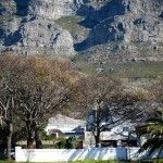 We love this picture with Table Mountain setting the scene and our little Urban Freedom greenhouse snuggled in at the Oranjezicht City Farm below.  Cape Town, South Africa. http://urbanfreedom.co.za/2013/08/ozcf-installation-greenhouse-envy/