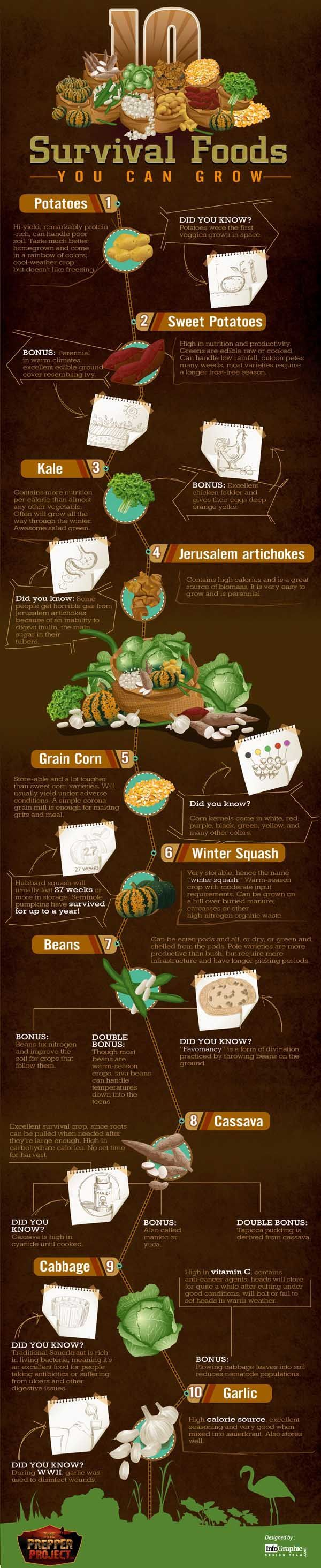 10 Survival Foods You Need to be Growing