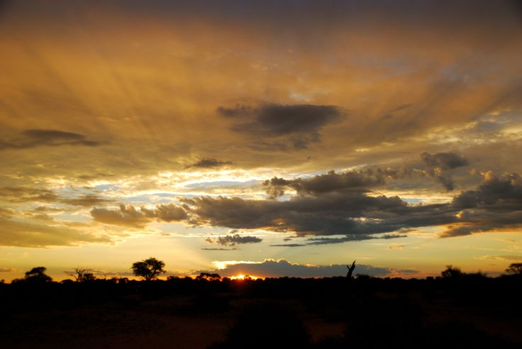 Another sunset in the Kalahari, Botswana.