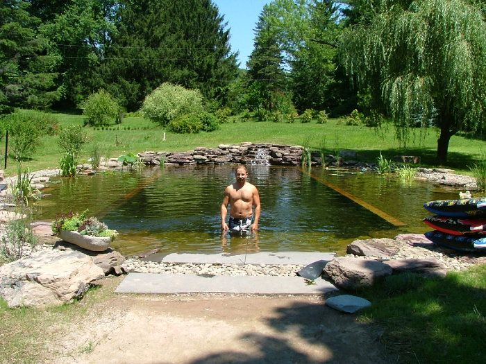 186 best images about spring fed natural pond on pinterest for Koi pond natural swimming pool
