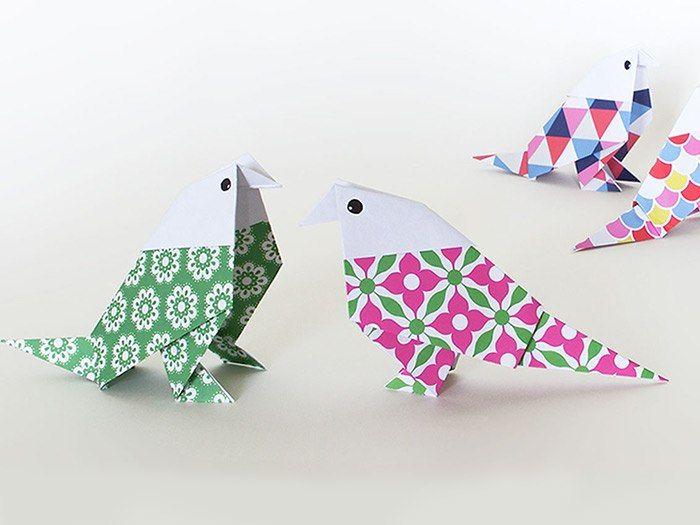 Du wolltest schon immer Wellensittiche halten, doch Dir fehlt die Zeit für ein Haustier? Dann bastele Dir doch ganz einfach ein paar Origami-Vögel aus Papier. Dilek von Maplepaper zeigt Dir, wie Du im Handumdrehen einen pflegeleichten Piepmatz bastelst.