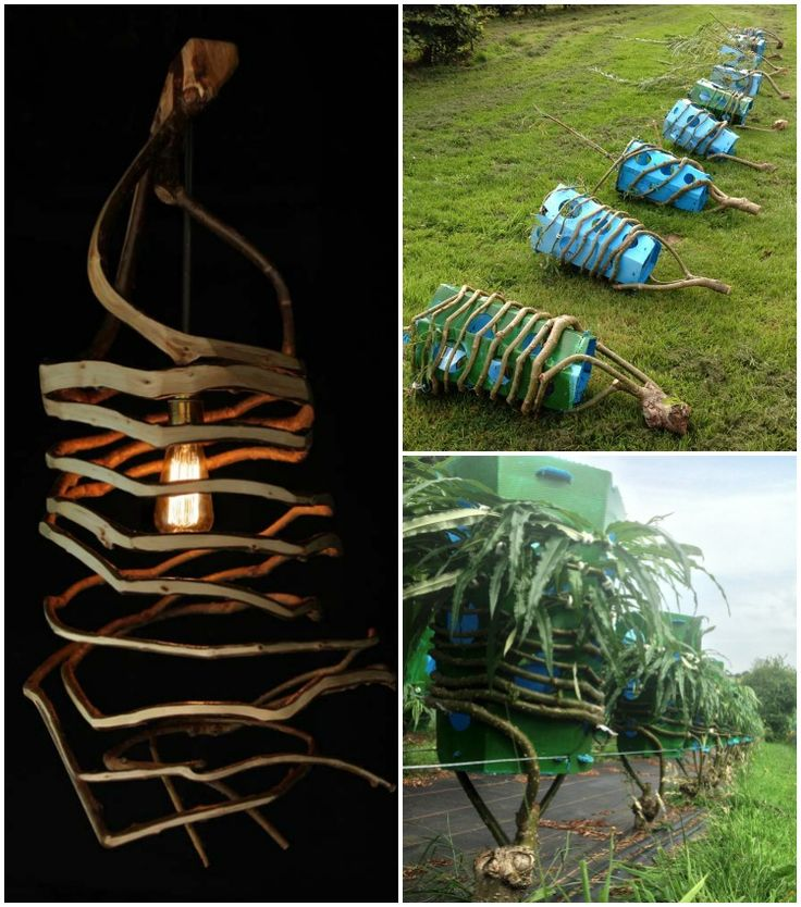 best 25+ natural lamps ideas on pinterest | natural desk lamps