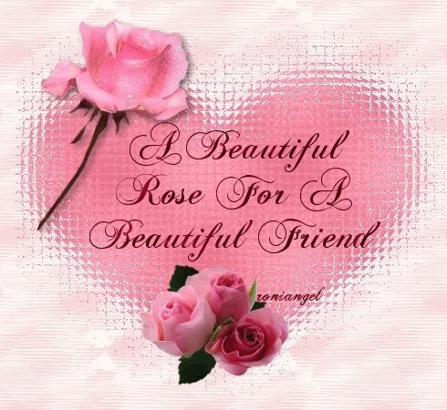 A Beautiful Rose For Friend Friendship Quote Pink